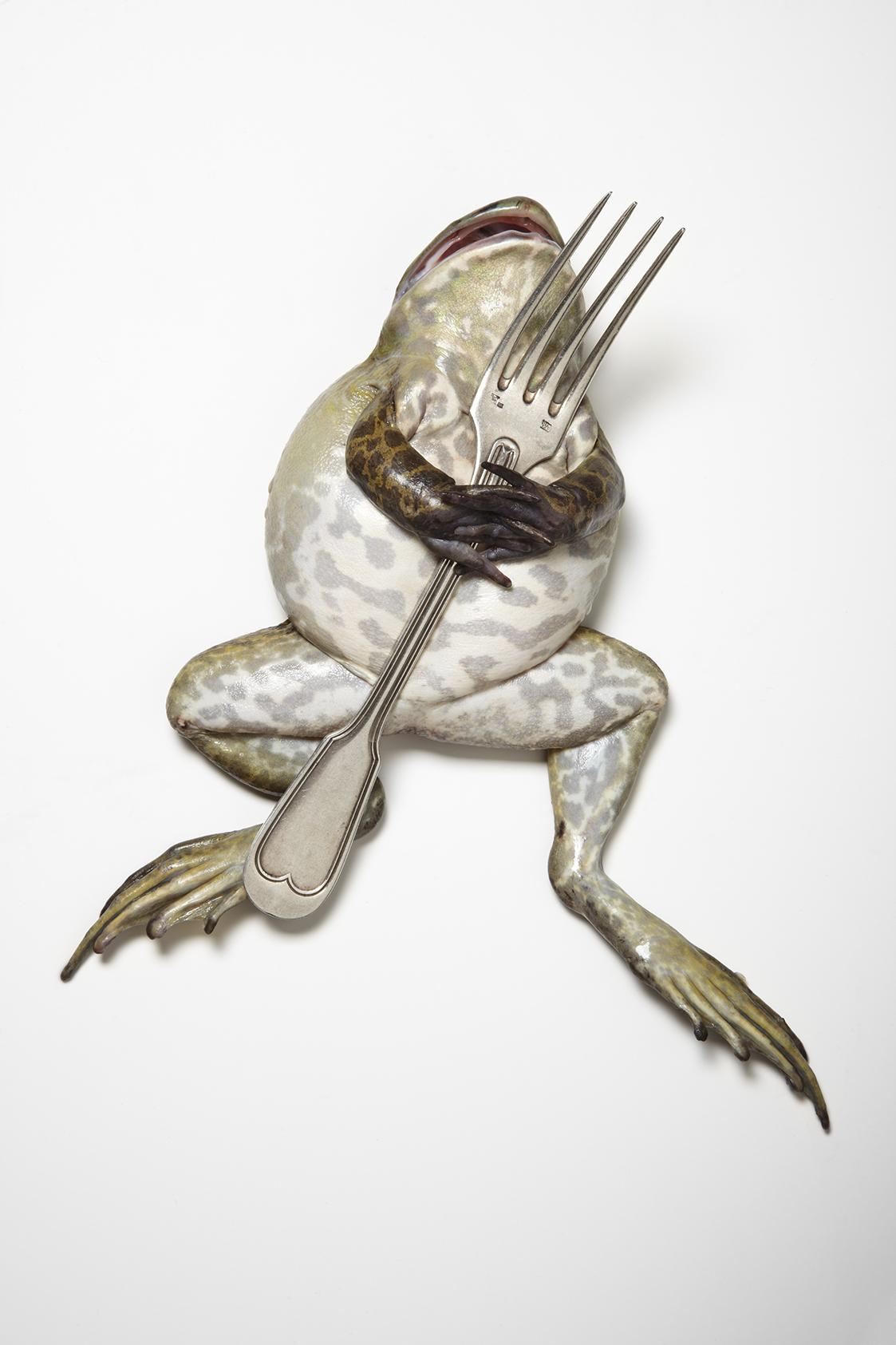 Fork Frog